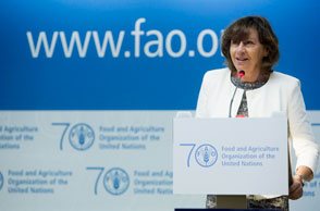 Statement by HOD Laurence Argimon-Pistre during the 39th FAO Conference