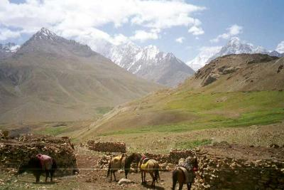 Horses and stone shelters in a treeless valley