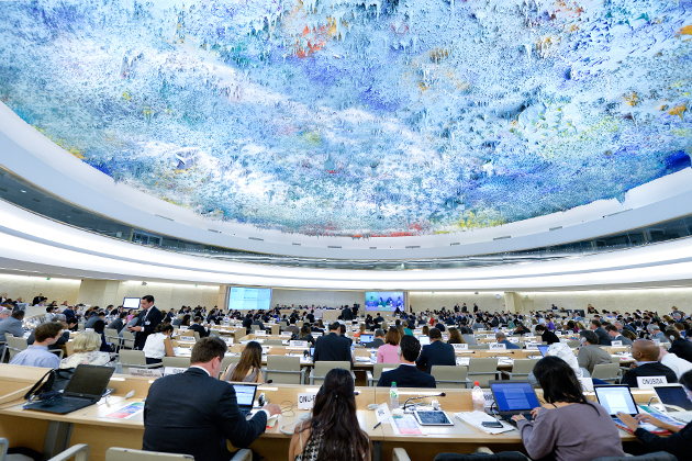 Outcomes of the 29th session of the Human Rights Council from a European Union perspective